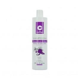Coiffeo - Ултравиолетов шампоан - 500 ml