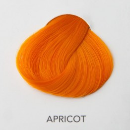 Directions Apricot - 89 ml